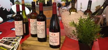 London Wine Fair Olympia 2018
