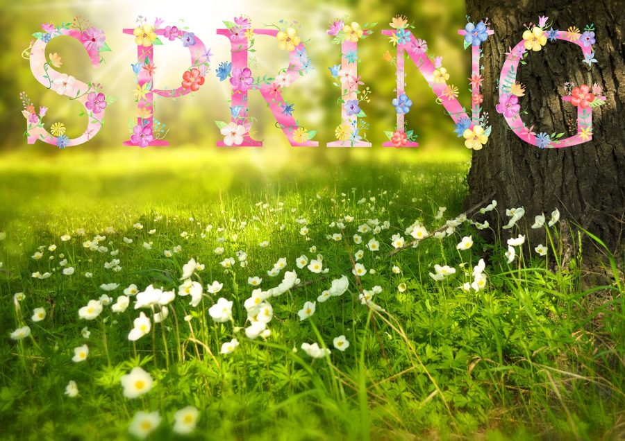 Spring has Sprung and we have Anniversary News.